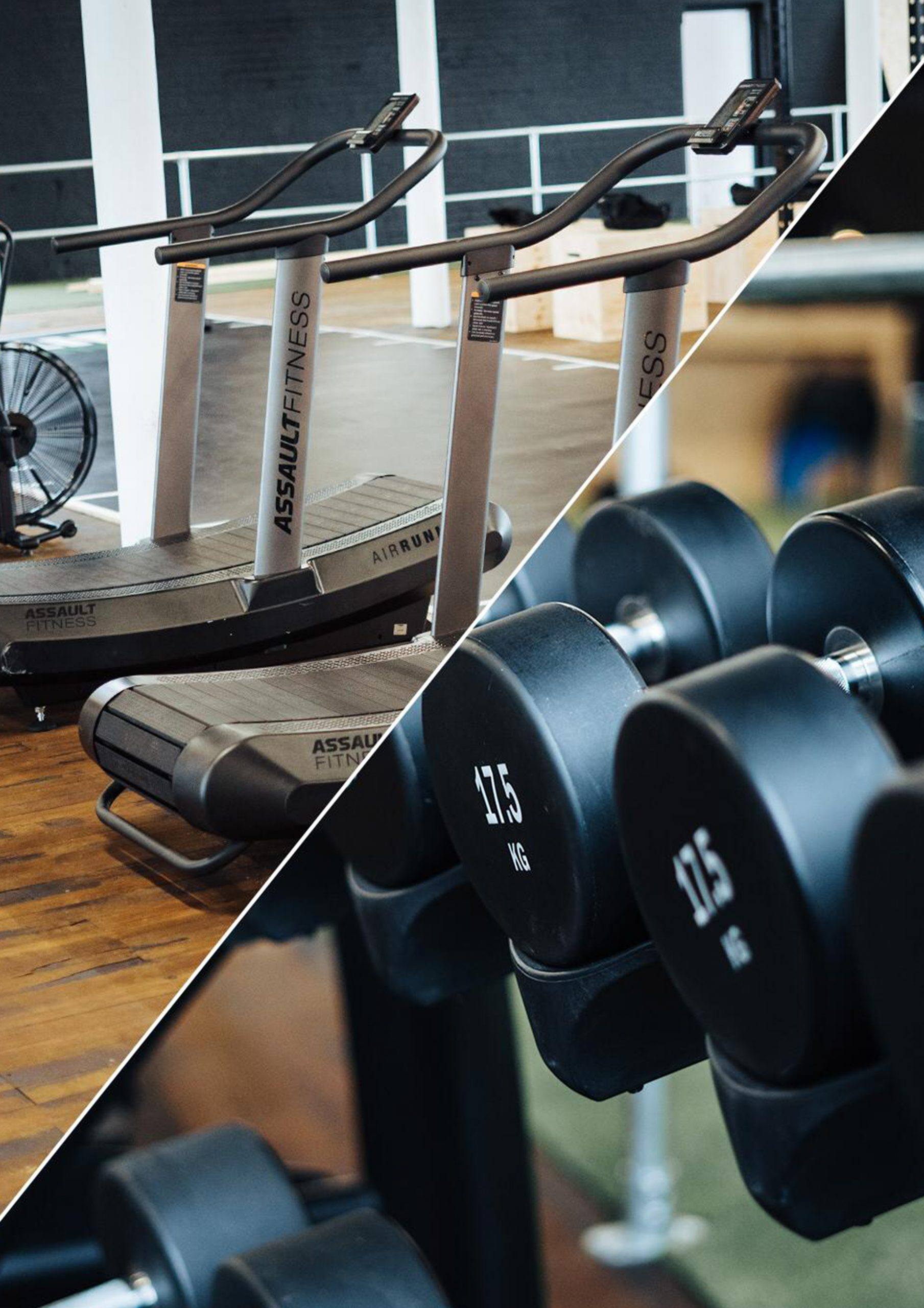 Cardio vs Weights for Fat Loss